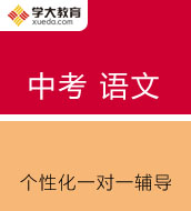 中考语文基础知识与能力综合专题班